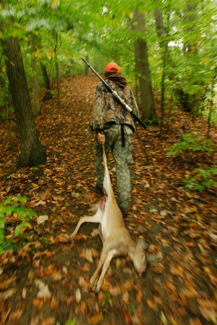 deer hunter dragging white tail deer through woods.