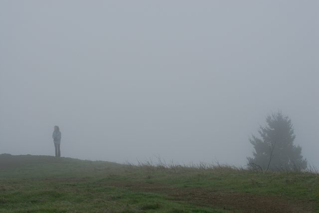 A foggy morning on Mount Tamalpais.