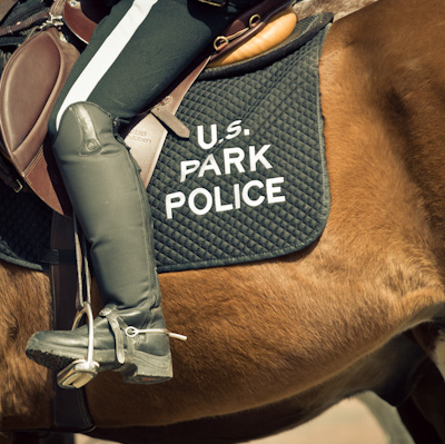 United States Park Police, Mounted Division. Washington DC. (Judge Mark Kearney's Ruling.)