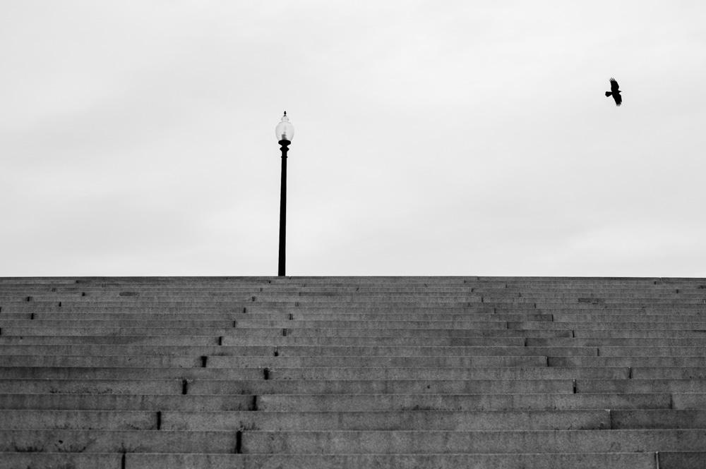 Crow, light post at Margaret Bourke-White steps. Washington DC.