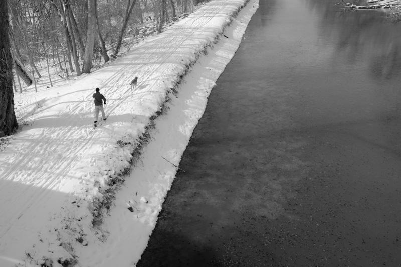 washington dc, c & o canal, cross country skis, man with dog