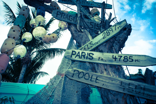 key west. city signs on tree