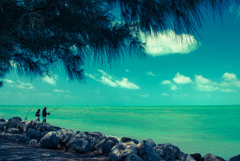 key west. fishing at fort zachary taylor