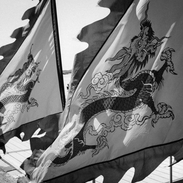 Flags. Dragon Boat Festival, Washington DC.