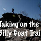 Billy Goat Trial image