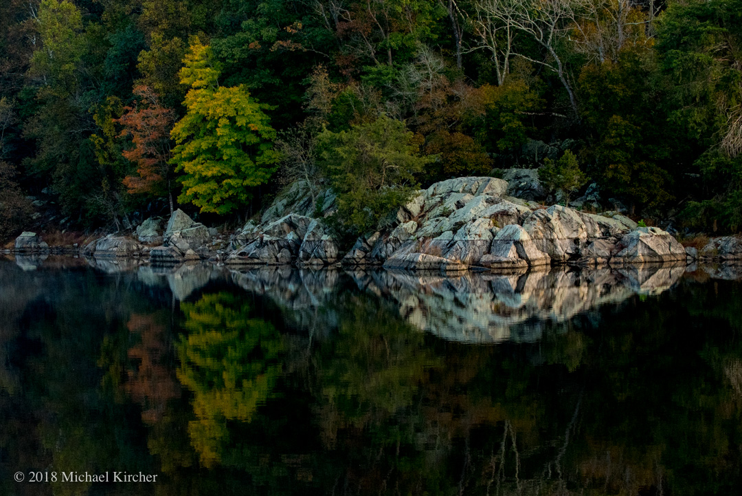 Reflections of trees and rocks at the C& O Canal.